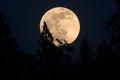 Full Moon Rising