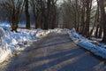 Full shadows road