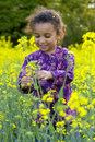 Fun Amongst the Flowers Stock Photography