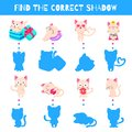 Fun game for kids. Find the correct shadow. Vector cartoon illustration. Cute doodle cats Royalty Free Stock Photo