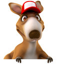 Fun kangaroo d generated picture Royalty Free Stock Photos