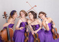 Fun musical quartet Royalty Free Stock Photo