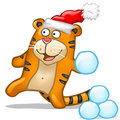 Fun tiger with snowball Royalty Free Stock Photo