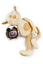 Fun toy cat Royalty Free Stock Photo