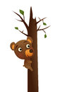 Fun wild bear illustration in the wilderness climbing a tree brown Royalty Free Stock Photos