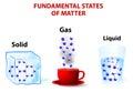 fundamental states of matter