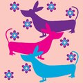 Funky dogs flowers retro background Royalty Free Stock Photos