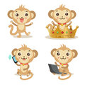 Funky Monkey. Vector Animal Illustration. Cute Monkey Pictures.