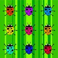Funky retro ladybugs Royalty Free Stock Photos
