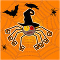 Funky spider halloween concept crow bat web Stock Images