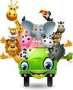 Funny animal cartoon on green car