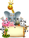Funny animal cartoon set with blank sign Royalty Free Stock Photo