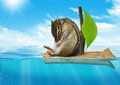 Funny animal chipmunk floating at sea voyage concept ocean Stock Photo