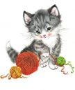 Funny animal Kitten. watercolor Royalty Free Stock Photo