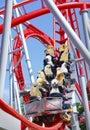 Funny Animal Roller Coaster