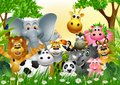Funny animal wildlife cartoon collection