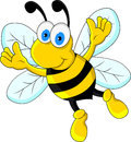 Funny bee cartoon character Royalty Free Stock Images