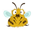 Funny bee vector image of big cartoon Stock Image