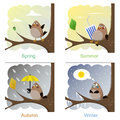 Funny birds sparrow in every season of the year Royalty Free Stock Images