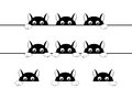 Funny black cats illustration Royalty Free Stock Photos