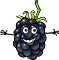 Funny blackberry fruit cartoon illustration of food comic character Stock Image