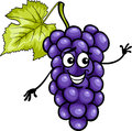 Funny blue grapes fruit cartoon illustration of or black food comic character Stock Photos