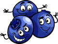 Funny blueberry fruits cartoon illustration of berry food comic character Royalty Free Stock Image