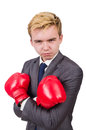 Funny boxer businessman in sport concept Royalty Free Stock Photography
