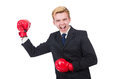 Funny boxer businessman in sport concept Royalty Free Stock Images