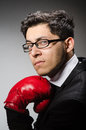 Funny boxer businessman in sport concept Royalty Free Stock Image