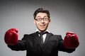 Funny boxer businessman in sport concept Royalty Free Stock Photos