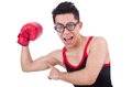 Funny boxer isolated on the white background Royalty Free Stock Photos