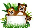 Funny brown bear family with blank sign Stock Photo