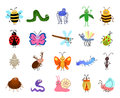 Funny bugs. Vector cute insects on white background