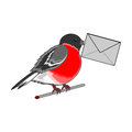 A funny bullfinch with a letter in his beak vector art illustration on white background Stock Photos