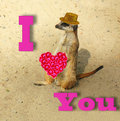Funny card with words of love meerkat in elegant shiny hat holding a bouquet flowers in the shape heart Stock Photos