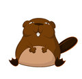 Funny cartoon beaver vector image of smiling Royalty Free Stock Images