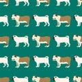 Funny cartoon bulldog dog character bread seamless pattern puppy pet animal doggy vector illustration.