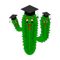 A funny cartoon cactus in a magister cap vector art illustration on white background Royalty Free Stock Image