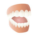 Funny cartoon denture illustration of Stock Photography