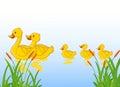 Funny cartoon duck family