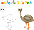 Funny cartoon emu. Coloring book Royalty Free Stock Photo