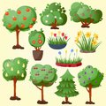 Funny cartoon green garden park tree with fruits set vector nature elements wood graphic illustration