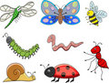 Funny cartoon insect Stock Image