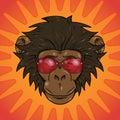 Funny cartoon monkey with glasses Royalty Free Stock Photo