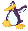 Funny cartoon penguin Royalty Free Stock Image