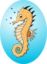 Funny cartoon sea horse Stock Photography