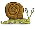 Funny cartoon snail, vector. Royalty Free Stock Images