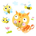 Funny cat and the Bee Royalty Free Stock Image