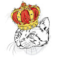 Funny cat in the crown. Vector illustration for a card or poster. Prints on the clothes or accessories. Royalty Free Stock Photo